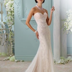 Champagne David Tutera Wedding Gown Edan NWT